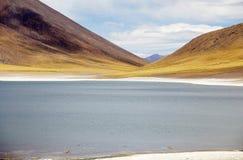 Miniques lagun i den Atacama öknen, Chile Royaltyfria Foton