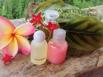 MinisatzSchaumbad und Dusche verziert im natürlichen Hintergrund und in der Blume Lizenzfreie Stockbilder