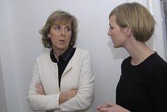 MINISTER FÖR MS.IDA AUKEN FÖR MILJÖ arkivfoton