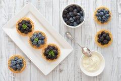 Minitörtchen mit frischen Beeren Stockbild