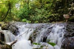 Miniwaterfall Imagen de archivo libre de regalías