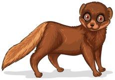 mink royalty-vrije illustratie