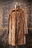 Mink coat Stock Image