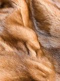 Mink fur Royalty Free Stock Photos