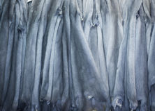 Mink Pelts. Hanging Luxury Blue Mink Pelts Royalty Free Stock Photography
