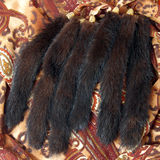 Mink tails Stock Image