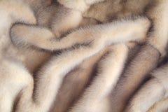 Minkpäls Texturen av deras hår fotografering för bildbyråer