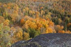 从秋天颜色峭壁的看法在树的在奥伯格山在Minn 免版税库存图片