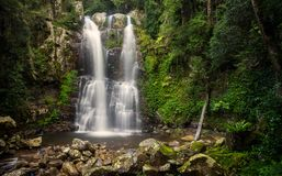 Minnamurra Falls Royalty Free Stock Photos