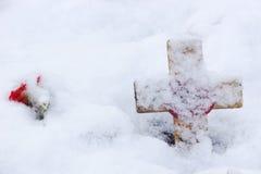 Minne som är argt med vallmon i snowen Royaltyfri Fotografi