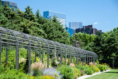 Minneapolis Skyline from the Sculpture Park Royalty Free Stock Photo