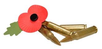 Minnedag Poppy And Bullets Royaltyfria Bilder