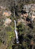 Minnehaha nedgångar - Katoomba Australien Royaltyfri Fotografi