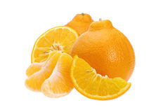 Minneola Stock Photos
