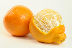 Minneola. Stock Images