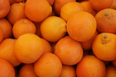 Minneola tangelo, Citrus x tangelo 'Minneola Tangelo' Stock Images