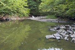 Minneopa小河弯和森林 库存图片