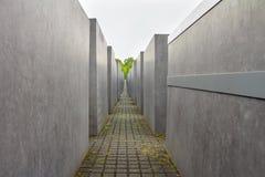 Minnes- monument för judisk förintelse i staden av Berlin Royaltyfria Foton