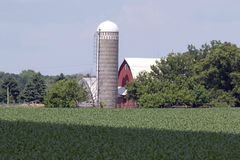 A Minnesota Farm Site. This farm is located in Sibley County, Minnesota. It includes a barn, a silo and some various out buildings. A dairy farm was set up to Royalty Free Stock Photo