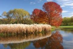 Minnesota-Herbst Stockbild