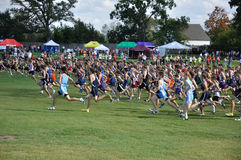 Minnesota High School Boys Cross Country Race Stock Images