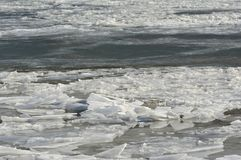 Minnesota River: Floating Pack Ice Display. Displaying assorted floating pack ice along the course of the Minnesota River in central Minnesota region stock image