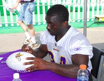Minnesota Viking Albert Young Royalty Free Stock Images