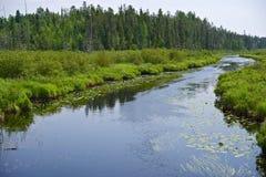 Minnesota Wilderness Royalty Free Stock Photos