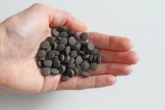 Minnestavlor är förestående Ayurveda piller Växt- naturliga indiska piller, Ayurveda behandling Ayurvedic medicinört Kopieringsut arkivbilder