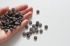 Minnestavlor är förestående Ayurveda piller Växt- naturliga indiska piller, Ayurveda behandling Ayurvedic medicinört Kopieringsut royaltyfri foto
