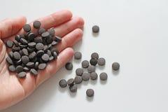 Minnestavlor är förestående Ayurveda piller Växt- naturliga indiska piller, Ayurveda behandling Ayurvedic medicinört Kopieringsut royaltyfria foton