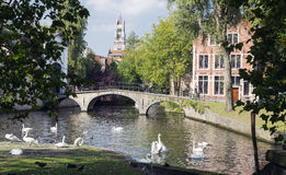 Minnewater lake. It is a canalized lake in Bruges, Belgium. The Dutch word Minne meaning love Royalty Free Stock Photo