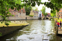 Free Minnewater Pond Begijnhof Monastery Brugge Belgium Stock Photography - 84082152