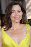 Minnie Driver Stock Photos