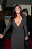 Minnie Driver Stock Images