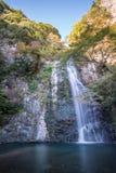 Mino cai Meiji-nenhum-mori parque Quase-nacional de Mino (cachoeira) de Mino Minoo Park Stream Imagens de Stock Royalty Free