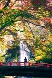 Minoh vattenfall arkivbilder