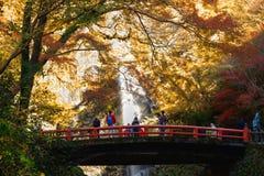 Minoh vattenfall i höstsäsong, Osaka Japan, härlig waterfa royaltyfri foto