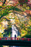 Minoh-Wasserfall stockbilder