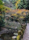 Minoo ή εθνικό πάρκο Minoh το φθινόπωρο, Ιαπωνία Στοκ Εικόνα