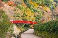 Minoo Park i höstsäsong, Minoh, Osaka, Japan Arkivfoton