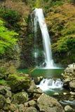 Minoo Wasserfall Osaka Japan Lizenzfreie Stockfotografie