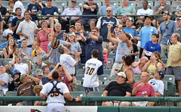 2014 minor league baseball Fotografia Stock