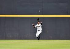 2014 Minor League Baseball Stock Images