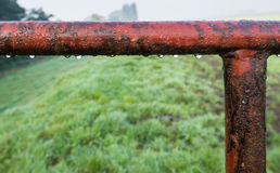 Minor part of an old gate with dew drops Stock Photography