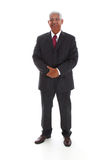 Minority Businessman Royalty Free Stock Photography