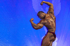 Minsk-Belarus, April, 26: Professional Male Caucasian Bodybuilde Royalty Free Stock Photography
