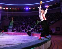 MINSK, BELARUS circus performance fabruary 18 2012 Royalty Free Stock Photos