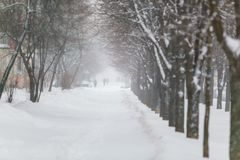 Severe snowstorm blowing hard in Zakharova Street royalty free stock photo