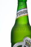 MINSK, BIÉLORUSSIE 23 AOÛT 2016 Bière de bouteille en verre de Tuborg sur le fond vert Photos libres de droits